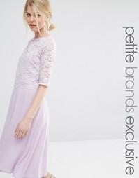 Короткое приталенное платье с кружевным топом и рукавами John Zack Pet