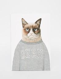 Блокнот формата A5 с котом Ohh Deer Geek - Мульти