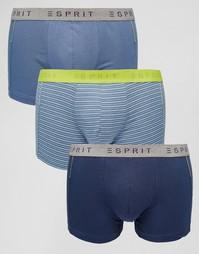 3 пары боксеров‑брифов в полоску Esprit - Синий
