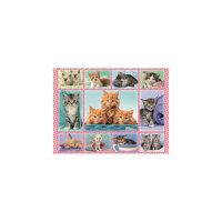Пазл «Забавные котята», 100 деталей, Ravensburger