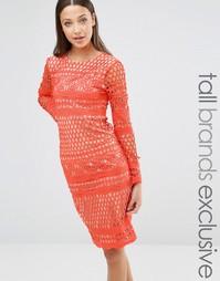 True Decadence Tall Long Sleeve All Over Lace Midi Dress