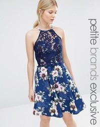 Платье-халтер для выпускного с цветочным узором на юбке и кружевом на Paper Dolls Petite
