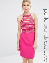 Облегающее платье с высокой горловиной и кружевом Paper Dolls Petite