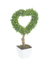 Искусственные растения Gardman