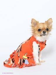 Платья для животных Home&Berries Home&;Berries
