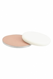 Пудра Skin Powder SPF15 S402 Medium Ellis Faas