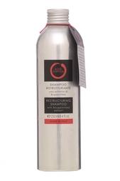 Шампунь с экстрактом бугенвиллеи Restructuring Shampoo, 250ml Aldo Coppola