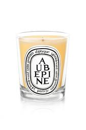 Свеча из парфюмированного воска Aubepine Diptyque