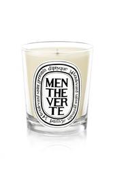 Свеча из парфюмированного воска Menthe verte Diptyque