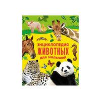 Энциклопедия животных для малышей Росмэн