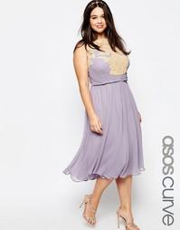 Платье миди с кружевной аппликацией ASOS CURVE WEDDING - Фиолетовый