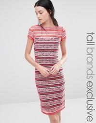 Кружевное платье в полоску с короткими рукавами Paper Dolls Tall