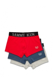 Комплект трусов 3 шт. Sammy Icon