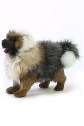 Чау-чау щенок Hansa