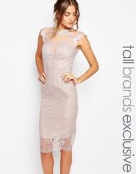 Платье-футляр из кружева и сетки Little Mistress Tall - Кремовый