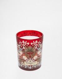 Ароматизированная свеча Morris & Co 240 г. (Время горения до 50 часов) Beauty Extras