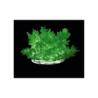"Лучистые кристаллы ""Зеленый кристалл"" Lori"