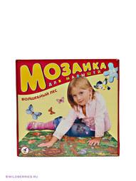 Мозаики Дрофа-Медиа