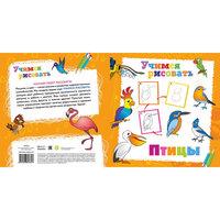 """Книга """"Птицы"""" Учимся рисовать Новый Диск"""