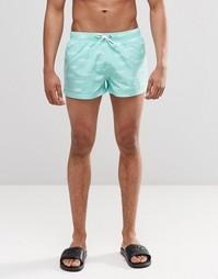 Короткие шорты с принтом акул Swells - Зеленый