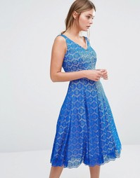 Приталенное платье со свободной юбкой Coast Azaela - Кобальтовый