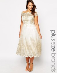 Кружевное платье для выпускного с короткими рукавами Chi Chi London Pr