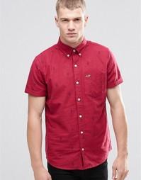Оксфордская рубашка зауженного кроя с принтом кактусов и короткими рук Hollister