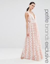 Платье макси с цветочным кружевом True Decadence Petite Premium