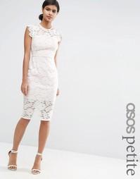 Кружевное платье-футляр с контрастной подкладкой ASOS PETITE