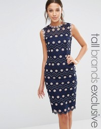Платье-футляр с контрастным цветочным кружевом Paper Dolls Tall