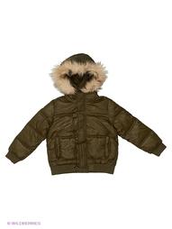 Куртки LOVEDO