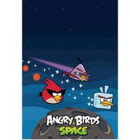 Мешок для обуви, Angry birds, CENTRUM
