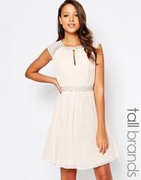 Короткое приталенное платье с декоративной отделкой Little Mistress Ta