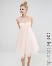 Платье для выпускного из тюля с вырезом сердечком Boohoo Petite