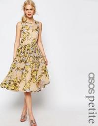 Платье миди для выпускного с принтом желтых роз ASOS PETITE - Мульти