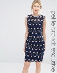 Платье-футляр с высокой горловиной и контрастным цветочным кружевом Pa Paper Dolls Petite