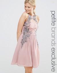 Короткое приталенное платье с кружевным принтом Little Mistress Petite