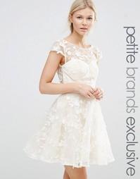 Короткое приталенное платье с 3D‑аппликацией Chi Chi London Petite