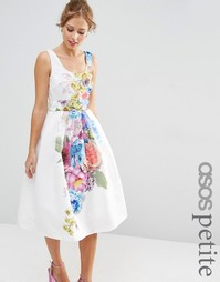 ASOS PETITE SALON Beautiful Floral Placed Midi Prom Dress - Мульти