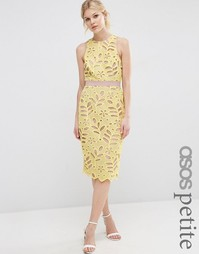 Кружевное платье-футляр миди ASOS PETITE Premium - Желтый