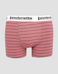 Шорты-боксеры в полоску Lambretta - Серый