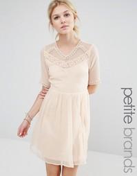 Короткое приталенное платье с сетчатой кокеткой Vero Moda Petite