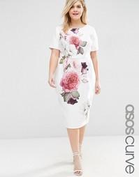 Платье-футляр с принтом роз ASOS CURVE - Принт