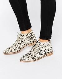 Кожаные туфли на плоской подошве ASOS MARLS - Leopard