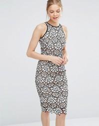 Кружевное платье-футляр Coast Ritvina - Черно-белый