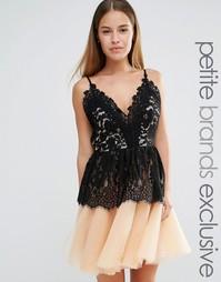 Платье для выпускного с кружевным лифом и юбкой из тюля True Decadence