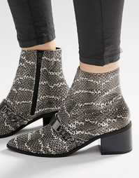 ASOS RASQUAL Pointed Ankle Boots - Snake