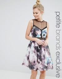 Короткое приталенное платье без рукавов Little Mistress Petite