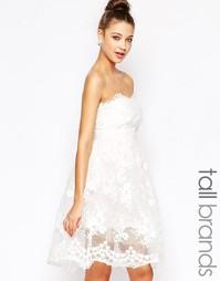 Кружевное короткое приталенное платье True Decadence Tall - Белый