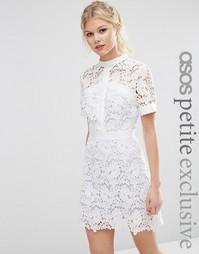 Короткое приталенное платье с контрастной подкладкой ASOS PETITE